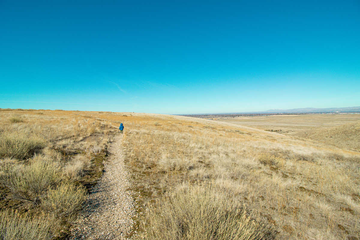 toddler hiking in grassy field