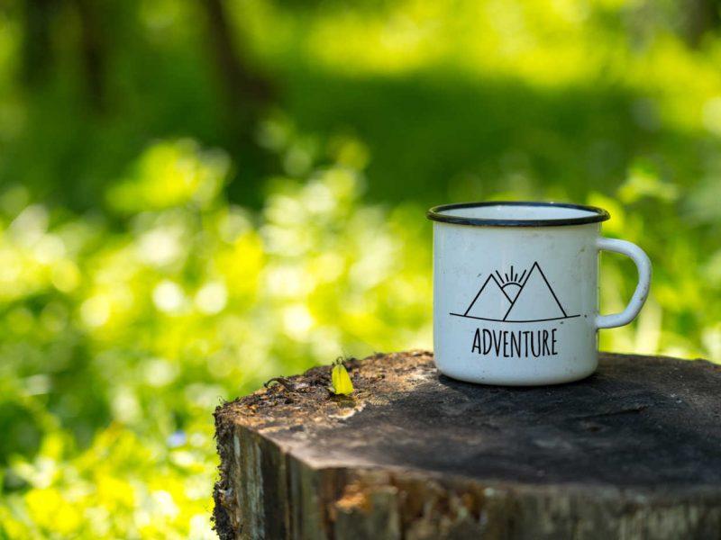 coffee mug sitting on stump