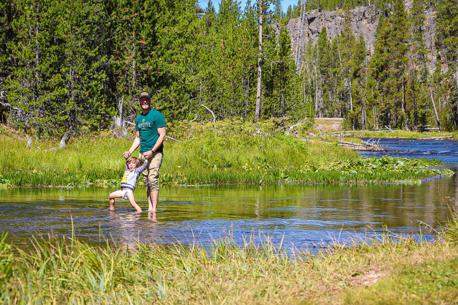 Father and toddler wading through water in Yellowstone National Park.