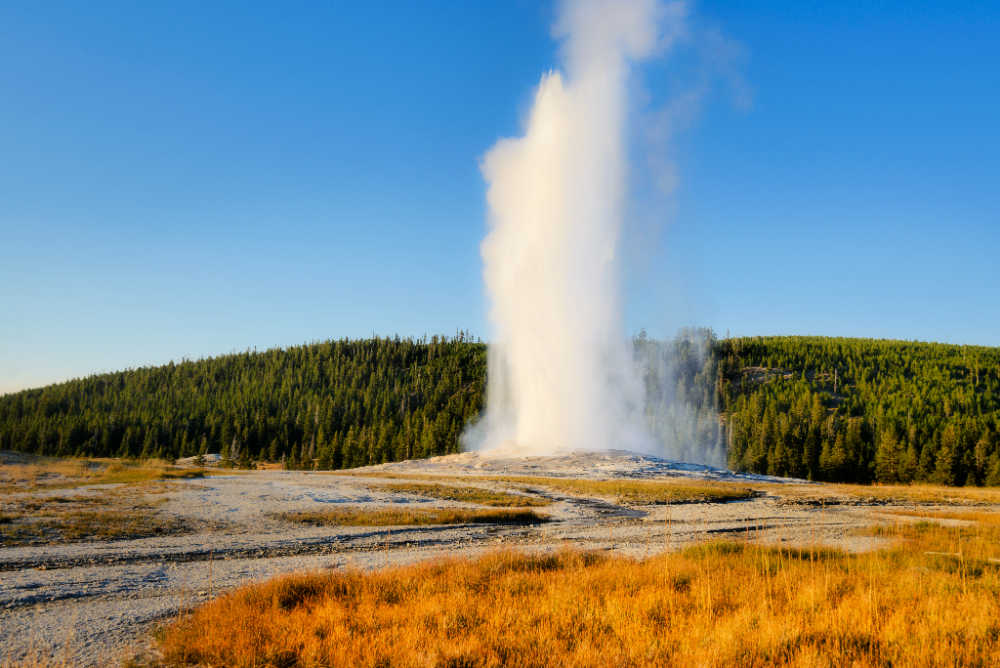 Old Faithful Geyser exploding at Yellowstone National Park
