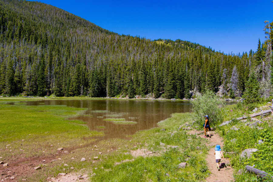 Woman hiking with toddler on a bright summer day, beside a small pond and hill with pine trees.