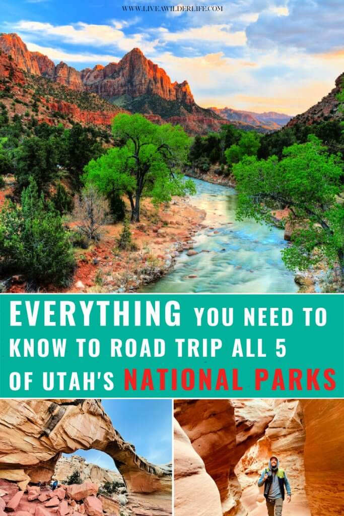 Pinterest graphic about planning a Utah National Parks road trip.