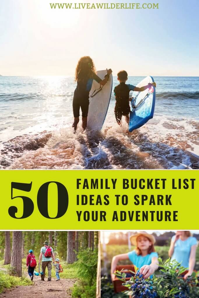 Pinterest Graphic with family bucket list adventures like hiking, surfing, and fruit picking.